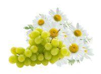 Anggur-chamomlile-zayana-beauty-brightening-serum.jpg